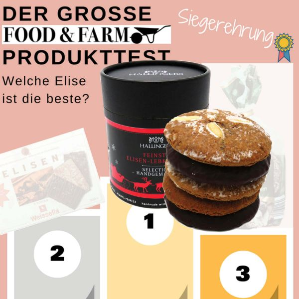 5 handgemachte Elisen-Lebkuchen in edler Papierdose (400g) - Zartbitter Schokoliert (Naschdose)